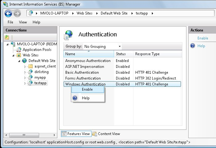 Enable Windows Authentication for the ASP.NET application